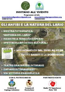 volantino-agg-04-05-19